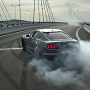 2015-Mustang-Year-of-the-Horse Screenshot