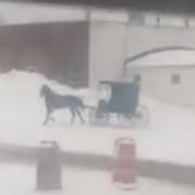 Amisch