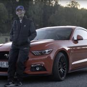 Mustang-Fan